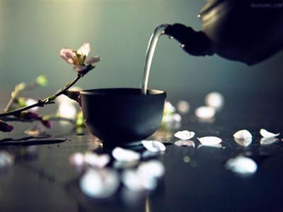 虫草全松茶OEM厂家可承接虫草全松茶包定制生产加工