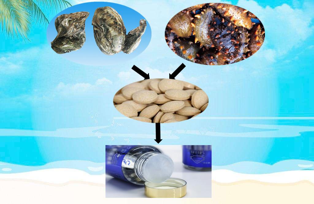 海参肽片代加工澳洲进口原料海参肽精片(QS)OEM代加工/贴牌生产